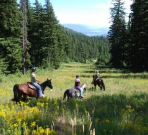 Mountain Horse Adventures in Sandpoint, Idaho