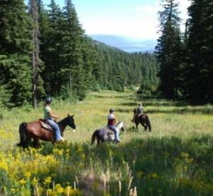 Mountain Horse Adventures in Sandpoint, Idaho